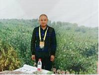江西湖口九普大型栀子种植基地